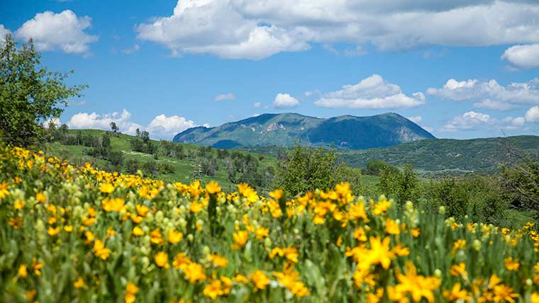 Steamboat Springs Lodging Specials