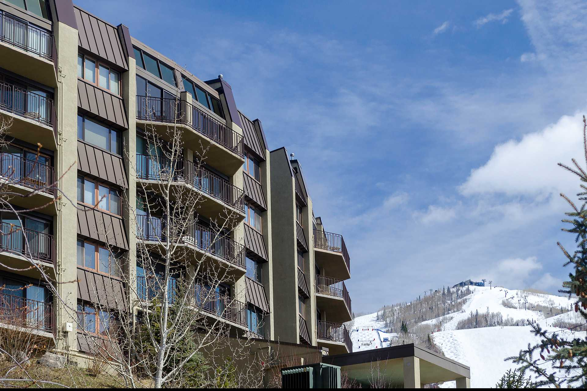 BT204: Bronze Tree Condominiums