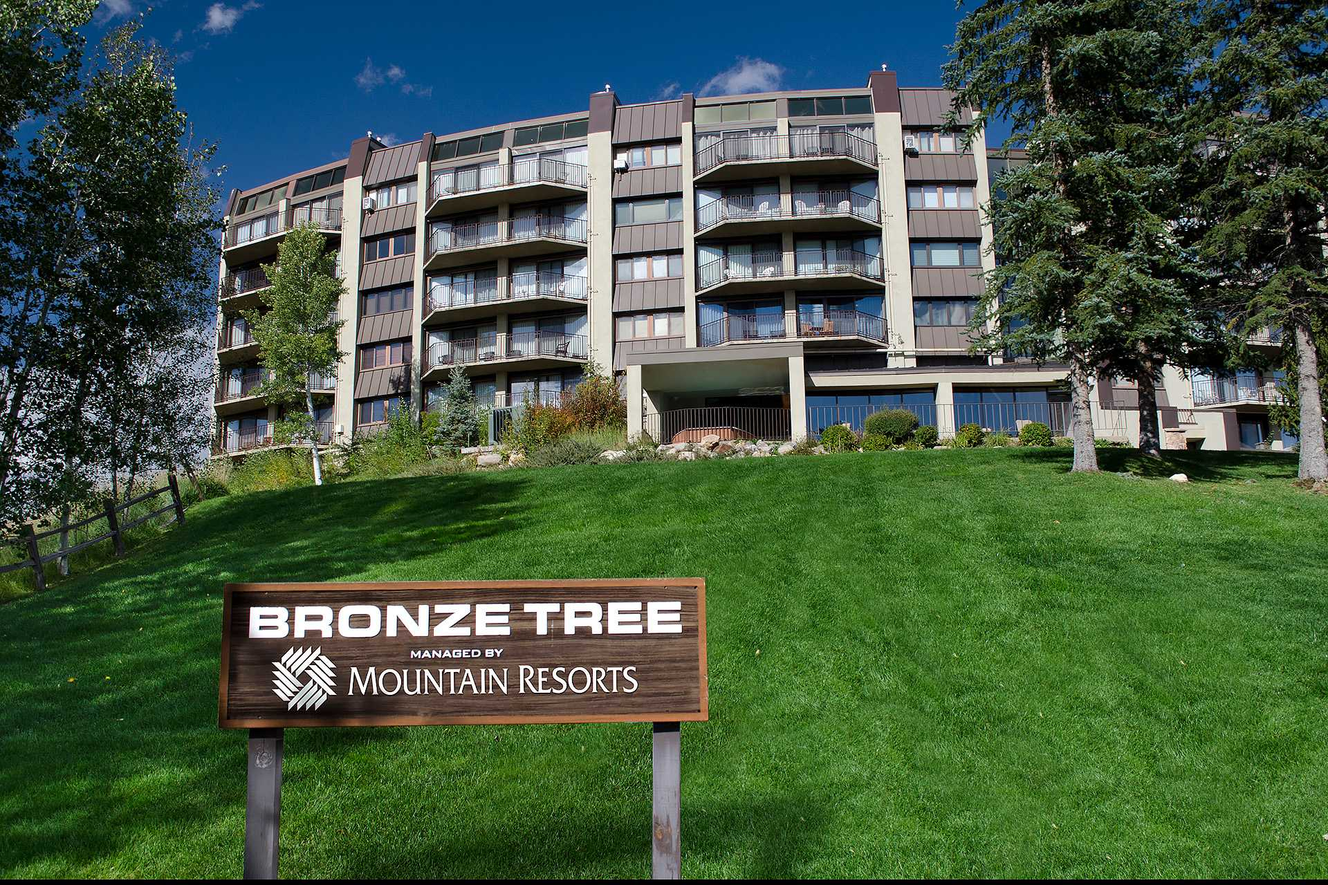 BT407: Bronze Tree Condominiums