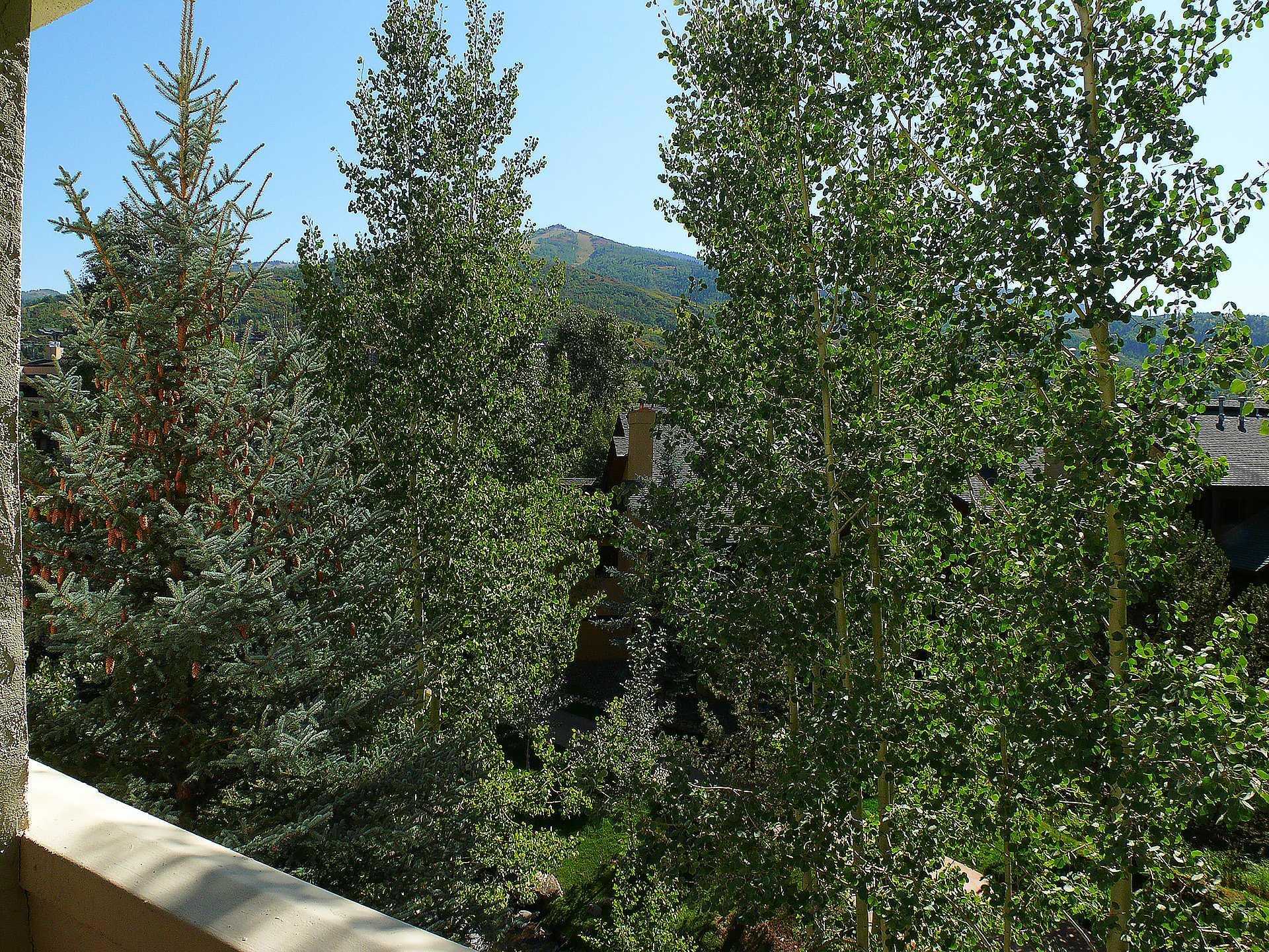 TRS14: Terraces at EagleRidge